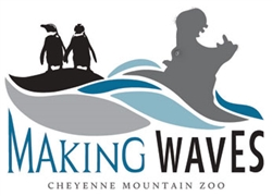 Making Waves logo image